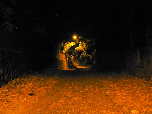 Ghostly Path